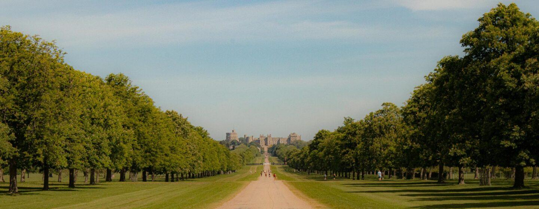 A view of Windsor Castle from inside Windsor Deer Park.