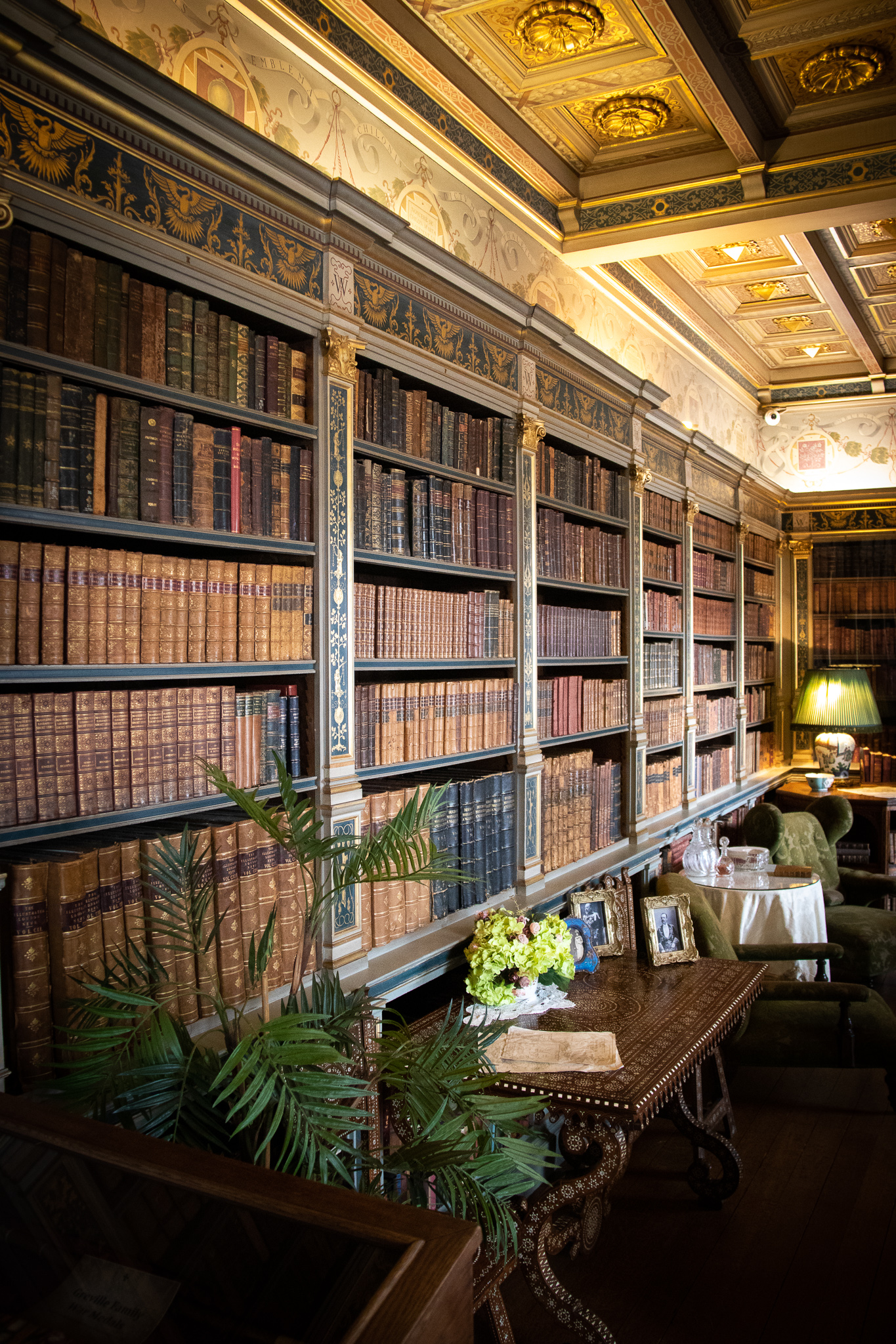 The library is filled with leather tomes, most of which have never been opened.